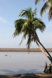 Vista Hacia el Mar Sobre el Canal de Chiquimulilla