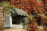 Window in Autumn