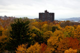 apartment over fall colors