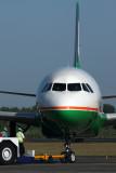 EVA AIR AIRBUS A320 DPS RF IMG_4516.jpg