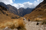 At the Inca trail