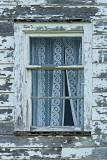 Botwood Area Jul-08 011 Window 1