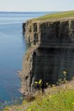 Bell Island 08 042
