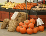 DSC05404 - Pumpkins and More