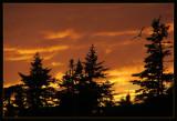 Roncalli Sunset 011
