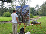 An Art Student  Studies the Live Oaks