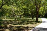 September 27th, 2006 - Trees 3692