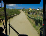 Dirt Road in Aruba