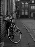 Brugge Evening, Alistair