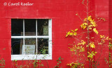 Red Wall with Yellow Leaves