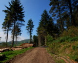 Forest Road, Rockmarshall
