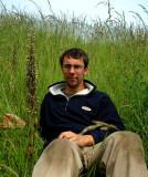 Bokkenorchis Zeeland, 95 cm hoog