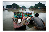 Ha Long fishing harbor 2