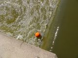 Orange ball demonstrates the dangerous conditions