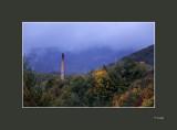 07 Colors at dawn.jpg