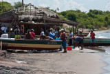 Fish Vending