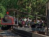 Train for Adventure Land