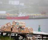 Ferryland fishing, Newfoundland