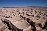 Desert Tile
