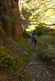 Pike Creek Trail