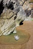 _MG_6879 Whitesand Bay.jpg