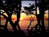 Sunset a Buena Vista 008.jpg
