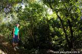 Trilhas Ecológicas, Guaramiranga, Ceara 8258
