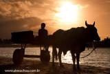 Praia dos Torroes, Itarema, Ceara 1033 091023.jpg