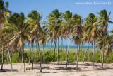 Praia da Enseada dos Patos, Itarema, Ceara 0926 091022 blue.jpg