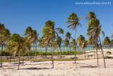 Praia da Enseada dos Patos, Itarema, Ceara 0927 091022 blue.jpg
