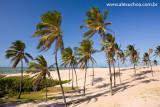 Praia da Enseada dos Patos, Itarema, Ceara 0938 091022 blue.jpg