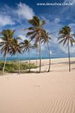 Praia da Enseada dos Patos, Itarema, Ceara 1316 091024 blue.jpg