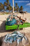 Praia dos Torroes, Itarema, Ceara 1094 091023.jpg