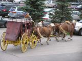 Well's Fargo Carriage Ride