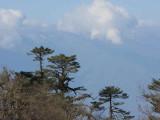 View from Yotung la, Bhutan