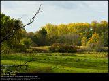 DSC5988 PS web.jpg