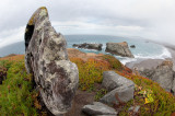 Sonoma County Beaches