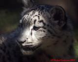 Toronto Zoo 10-16-09