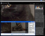 Color Noise: Adobe LR/ACR vs QImage