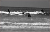 Mission Beach Surfers