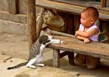 ** the cat and the child **