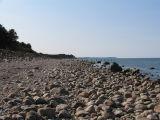 Coast of Hornbaek