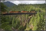 Q-Train Gaynor Trestle