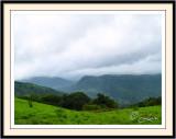 Kodachadri-Karnataka-India