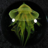 Illumijelly Size: 1.48 Price: SOLD