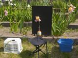 FCAS Setup