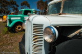 Close up of Late 40' - Early 50's Austin Truck