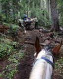 Trail work from the saddle   (Near Jug Lake)