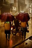 rain in Sapa