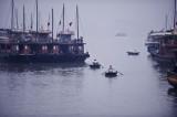 Halong Bay cruisers